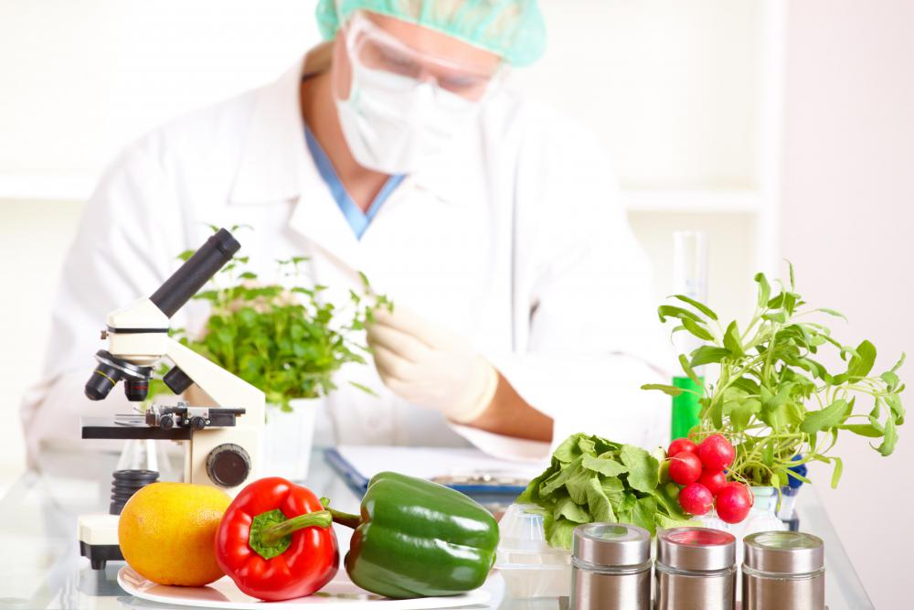 Food science is a broad field that studies things like food composition, safety, nutrition, and consumption.