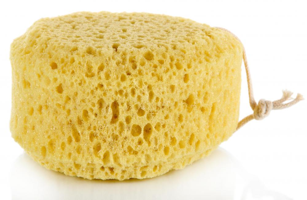 A sea sponge is the best tool to use when applying cleaning solutions onto windows.