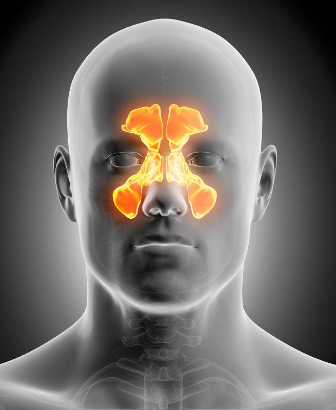 Sinuses are spaces within the body that serve different functions.