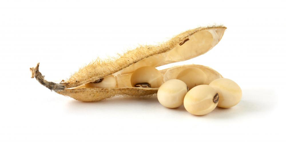 Soybeans are a source of plant-based lecithin.