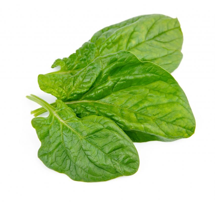 Spinach is a good source of ascorbic acid.