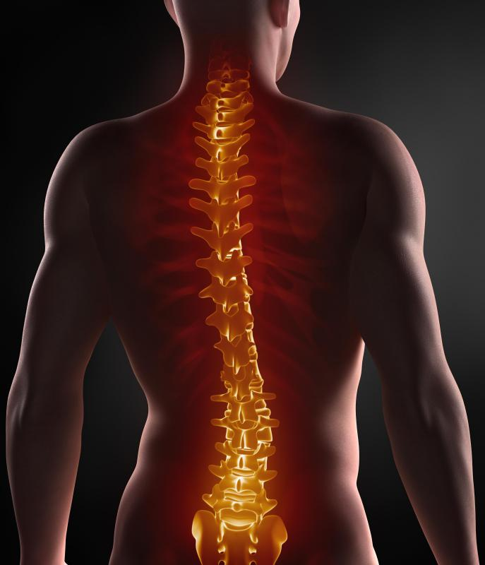 As people age, their vertebrae can start compressing their spinal discs.