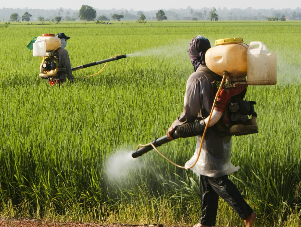 Pesticide and herbicide exposure can be potentially harmful to humans.