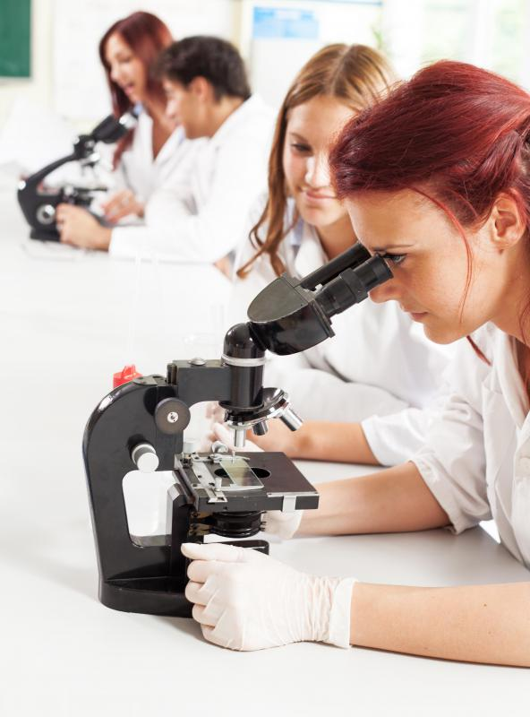 Students working in a lab setting are taught to don gloves as a safety precaution.