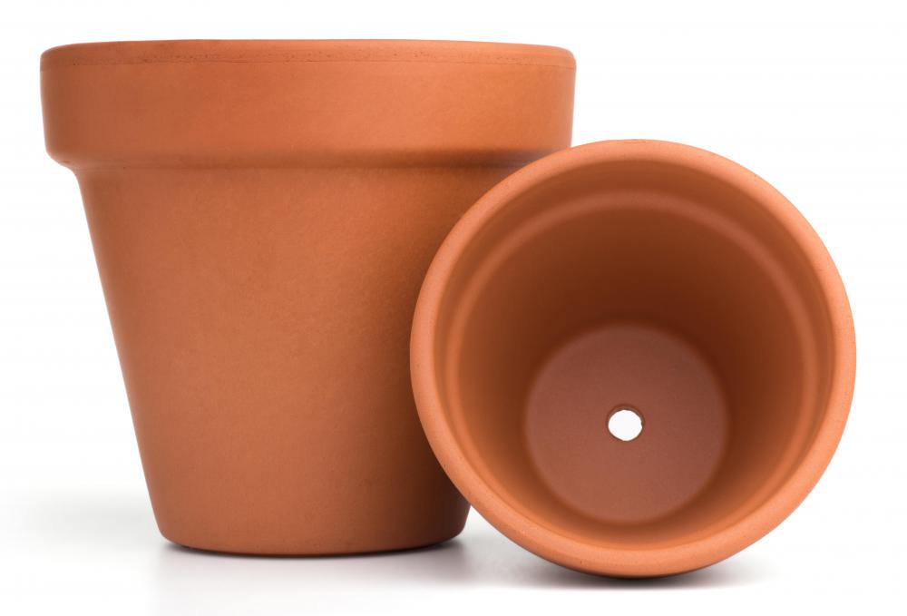 Terracotta is a popular material for planters.
