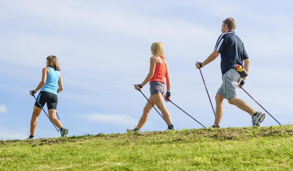 Using two hiking poles can relieve much of stress put on a hiker's joints and muscles.
