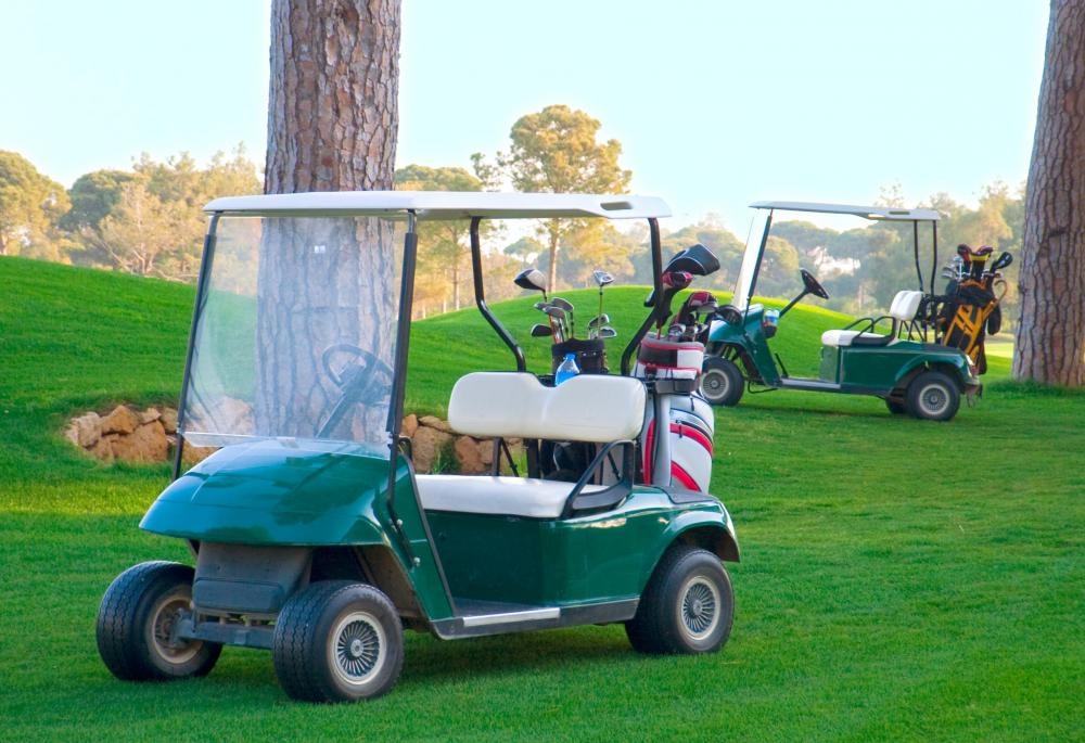 Many golf courses have a contingent of golf carts for customers to use.