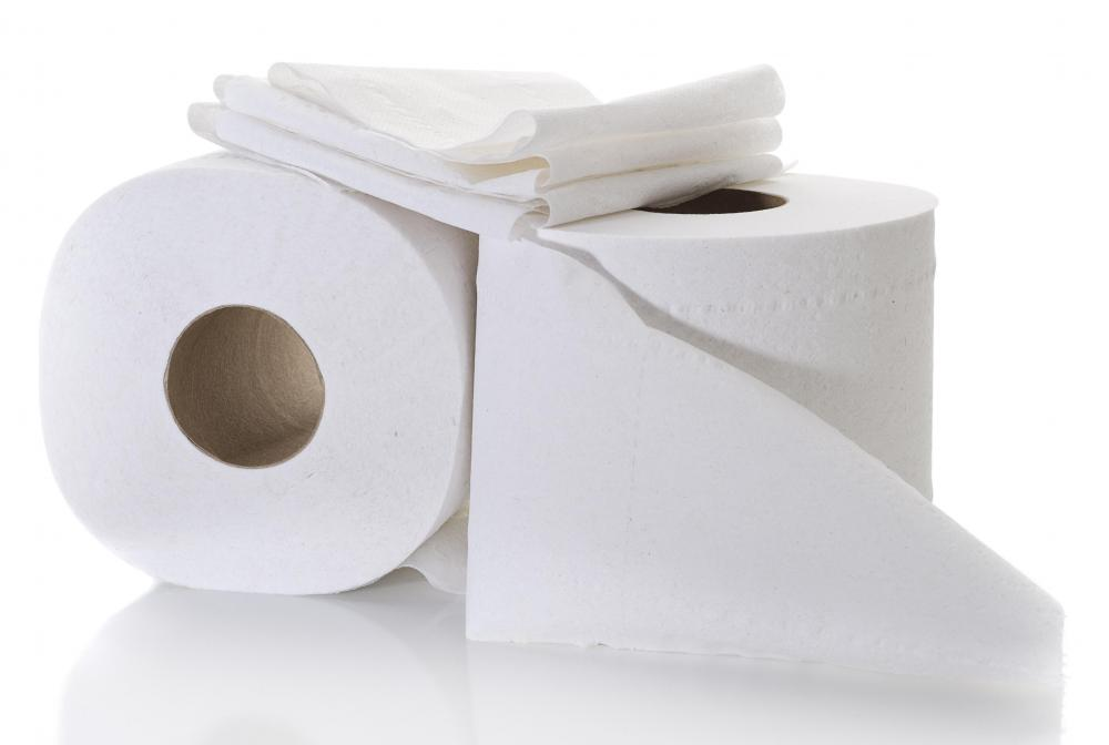 Toilet paper is often made from wood pulp.