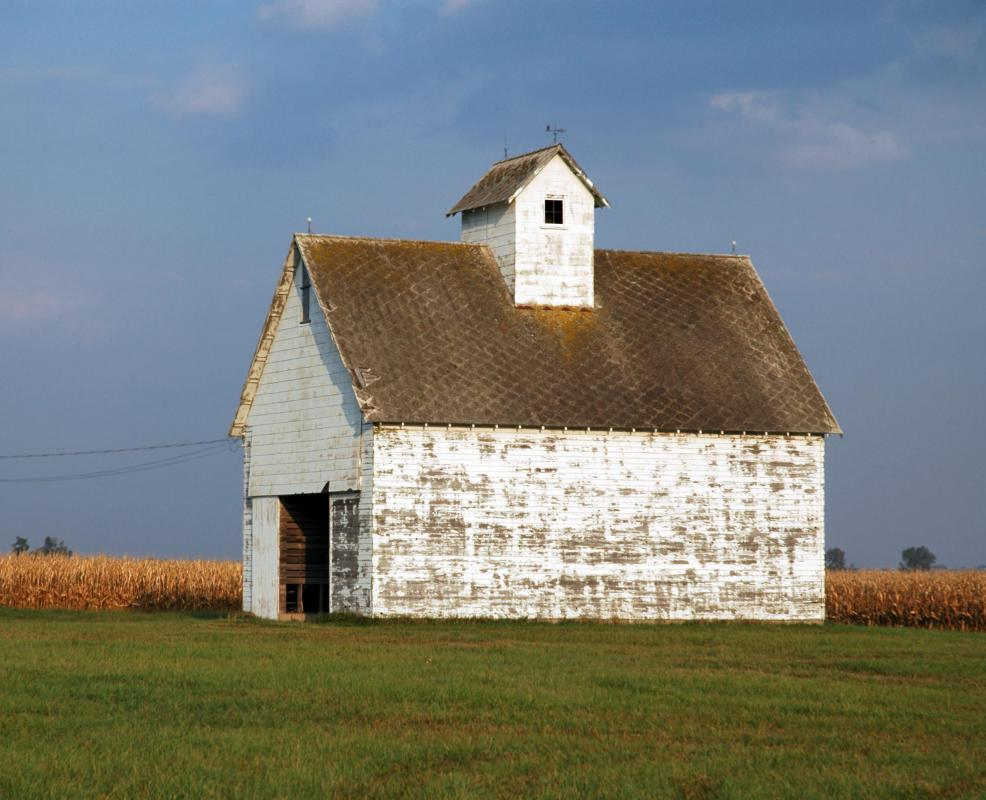 Whitewash may be ideal for the interior of barns.