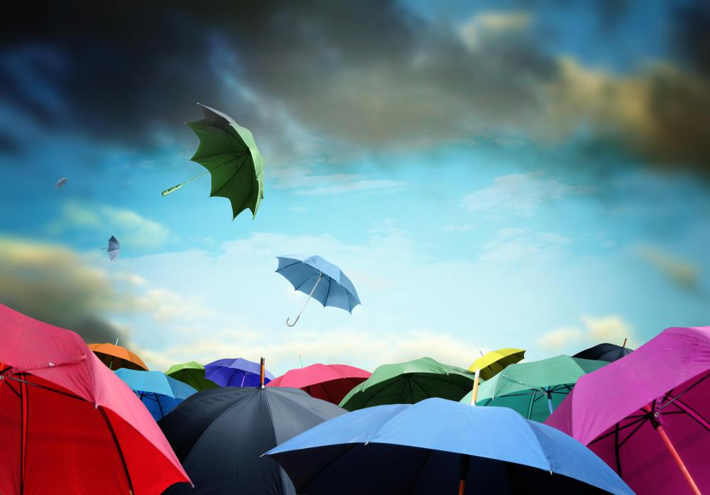 Umbrellas are considered a type of rain gear.