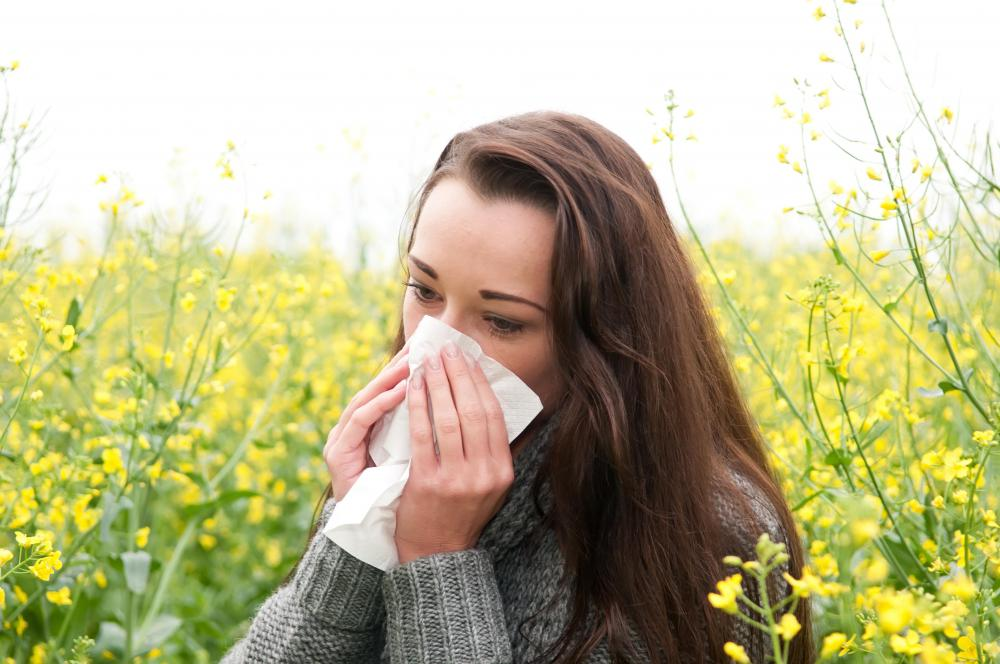 Allergy related post-nasal drip is typically caused by outdoor plants.