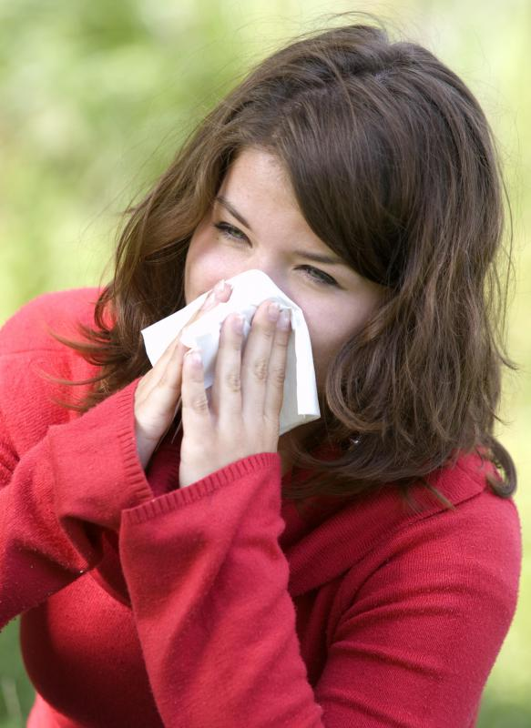 A person who accidentally forgets not to stifle a sneeze will likely not suffer any major health problems.