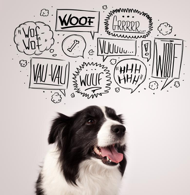 "The onomatopoeia ""woof,"" or the sound a dog makes, varies throughout the world."